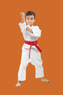 self defense 213x320 Self Defense for Kids