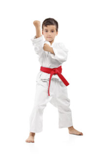 Karate kid posing 000017231416 XXXLarge 213x320 Muscle Tone with Martial Arts Training