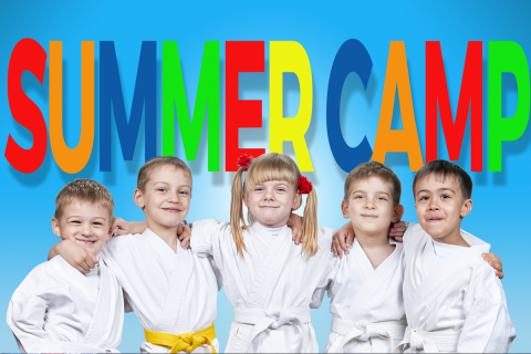 Martial Arts Summer camp 480x320 Martial Arts and Summer Camps